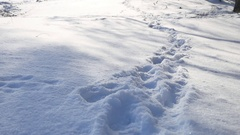 Human footprints in the snow winter landscape nature path a lot of snow Stock Footage