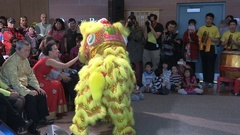 Chinese lunar new year festival with lion dance in Markham Canada Stock Footage