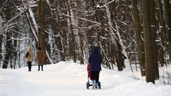 Woman With Pram Walking In Winter Forest Stock Footage