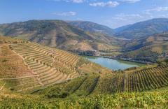 Vineyards and the Douro River, Alto Douro Wine Valley, UNESCO World Heritage Stock Photos