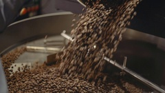 Freshly roasted coffee beans on a cooling tray, being mixed by a rotating Stock Footage