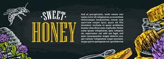 Horizontal poster with honey, honeycomb, jar, spoon, bee. Stock Illustration