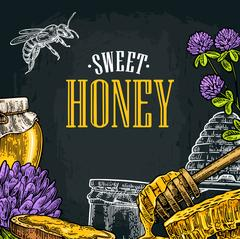 Square poster with honey, honeycomb, jar, spoon, bee. Stock Illustration