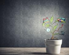 Drawn income tree in white pot for business investment savings and making money Stock Photos