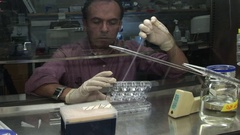 Researcher at fume hood reverse angle medium shot filling plates Stock Footage