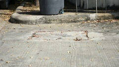 Fogging DDT spray kill mosquito Stock Footage