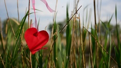 Red heart paper on green grass. Stock Footage