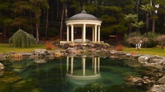 Arbour on the bank of the pond Stock Footage