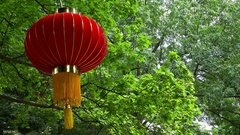 Chinese lantern in a green park. 4K. Stock Footage