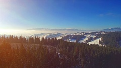 Snow winter landscape. fly over. aerial view. sun flare. trees silhouette Stock Footage