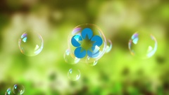 Bubbles logo 3 in 1 Stock After Effects