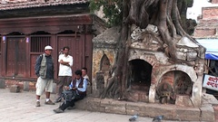 Men sit near old tree with huge roots on Durbar Square. Stock Footage