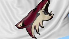 Close-up of waving flag with Arizona Coyotes NHL hockey team logo, seamless loop Stock Footage