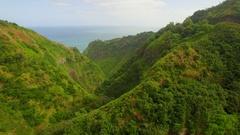 Tropical Jungle Valley (Jurassic Park) Jib Down - Aerial Stock Footage