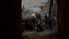 Farrier puts horseshoe to a horse Stock Footage