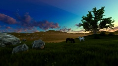 Two horses on green meadow and tree of life, morning lights Stock Footage