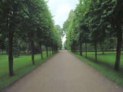 Alley in the Park in Peterhof Stock Footage