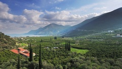 Orange trees olive orchard plantations landscape farm valley bay panorama aerial Stock Footage