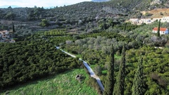 Olive orchards orange trees plantations green scenery farms agriculture aerial Stock Footage