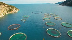 Fish farming floating pools cages aerial sea blue water coastal skyline Stock Footage