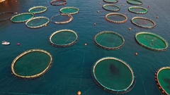 Fish farm floating net pools aerial backward sea water surface coast skyline Arkistovideo