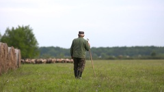 Shepherd and sheep in rural Hungary Stock Footage