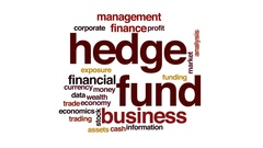 Hedge fund animated word cloud, text design animation. Stock Footage