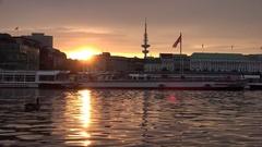 4K Amazing sunset orange light in Hamburg wild swan sail Alster Lake boat anchor Stock Footage