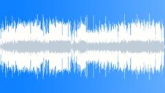 1 BLUES 02 BLUES D'LICKS (4 58) Stock Music