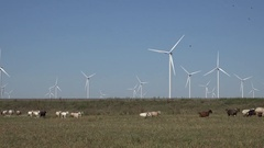 4K Wind turbine work on countryside wild goats animal cross land electric power Stock Footage