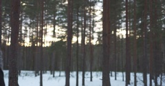 Slow motion of teenage girl raising hands in winter pine forest freedom concept Stock Footage