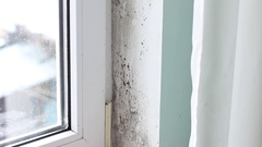 Moldy house corner from inside Stock Footage