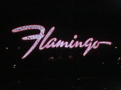 Flamingo Hotel Pink Neon Sign - Las Vegas -  1957 Stock Footage