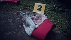 4K Crime Scene with Evidence Bloody Glove and Axe Stock Footage