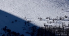 Panning Panorama of Powder Covered Mountain With Ski Trails in the Snow Forest Stock Footage
