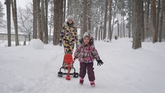 Winter walk in the wood. The girl with the child walk in the wood. The little Stock Footage