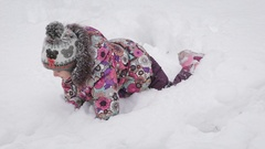 Little girl dressed in pink is the shoe, a bright jacket and cap with a pompon Stock Footage