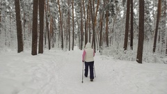 Back view of energetic woman doing active nordic walking exercising in the Stock Footage
