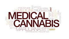 Medical cannabis animated word cloud, text animation. Kinetic typography. Stock Footage