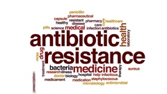 Antibiotic resistance animated word cloud, text design animation. Stock Footage