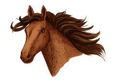 Horse head of arabian brown mustang vector sketch Stock Illustration