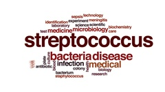 Streptococcus animated word cloud, text design animation. Stock Footage