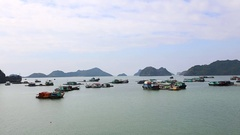 Fishing boats in the Cat Gia Bay. Cat Ba Island, Vietnam Stock Footage