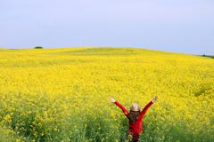 Little girl with hands up on field spring season Stock Photos