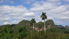 Karst Mountains in the Vinales valley (Valle de Viñales). Pinar del Rio, Cuba Stock Footage