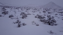 Aerial Moving Shot of Great Plains Sagebrush Prairie in Winter Snow Stock Footage