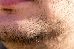 The hair on the male beard. macro Stock Photos