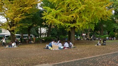 Tourists And People Relax At Ueno Park Tokyo Japan Asia Stock Footage