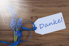 Sunny Srping Grape Hyacinth, Label, Danke Means Thank You Stock Photos