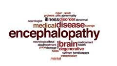 Encephalopathy animated word cloud, text design animation. Stock Footage